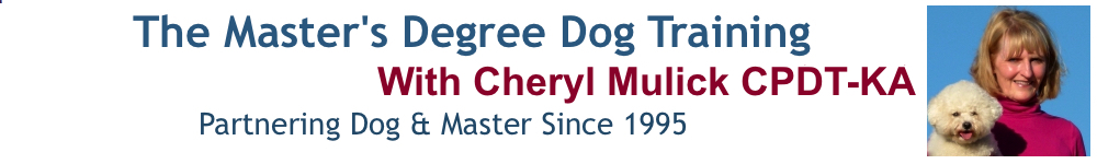 Master's Degree Dog Training